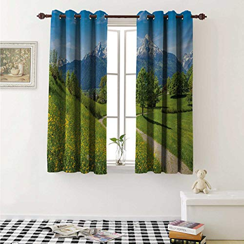 shenglv Mountain Blackout Draperies for Bedroom Spring Scenery in Alps with Floral Grass and Snowy Mountain Tops in Rural Village Curtains Kitchen Valance W72 x L63 Inch Multicolor