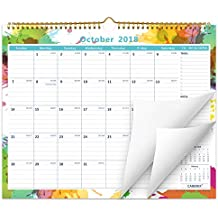 "Cabbrix November 2018 - December 2019 Monthly Wall Calendar, 15"" x 12"", Wirebound"
