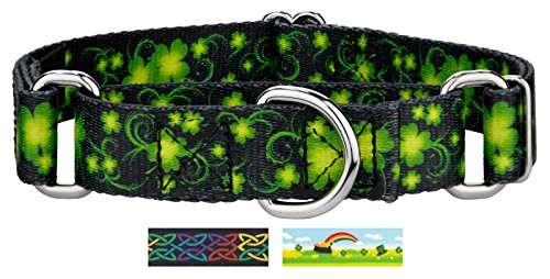 Dog Collar Designer Swirls (Country Brook Petz | Clovers in The Wind Martingale Dog Collar - Large)