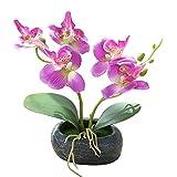 Plantas artificiales XKSIKjian, orquídeas artificiales de mariposa, bonsái, simulación de flores, flores de oficina, flores artificiales, ramo de flores para boda, fiesta, decoración del hogar, Moderno, Púrpura