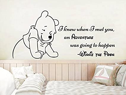 Classic Winnie The Pooh Wall Decals Quotes I Knew When I Met You An
