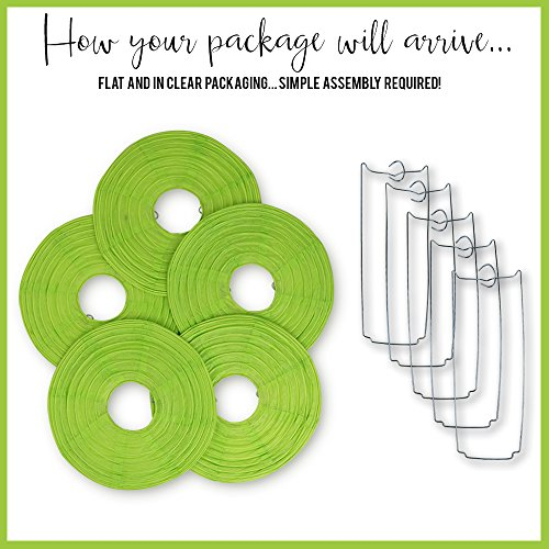 Just Artifacts 16-Inch Light Green Chinese Japanese Paper Lanterns (Set of 5, Light Green)