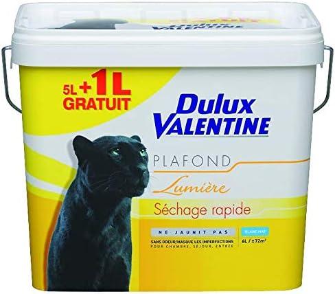 Dulux Valentine 5110879 Peintures Murs Et Plafonds Amazon