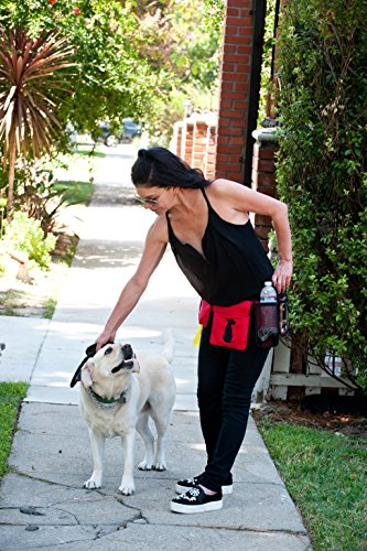 FreshStart DogiPack Hands Free and Organizational Dog Walking Belt (Grey) by FreshStart DogiPack (Image #1)