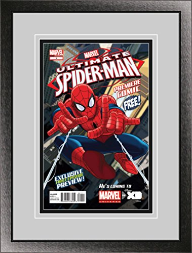 Perfect Cases Single Comic Book Frame with Double