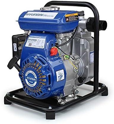 Hyundai Hy40 4 4 Takt Benzin Wasserpumpe Baumarkt
