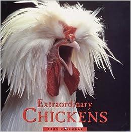 extraordinary chickens 2003 wall calendar