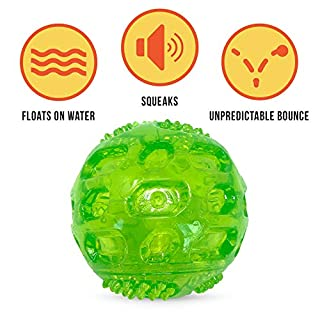 Hyper Pet Dura-Squeaks Ball Dog Toy