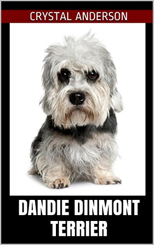 Dandie Dinmont Terrier: How to Own, Train and Care for Your Dandie Dinmont Terrier