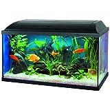 Aquarium Set avec filtre a décantation 60x30x30 cm
