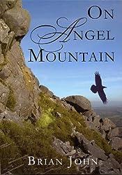 On Angel Mountain (The Angel Mountain Saga Book 1)