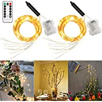 ALOVECO 8 Modes Fairy Lights with Remote Control for Christmas Tree Vines Decoration