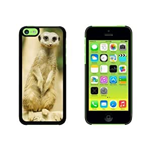 African Gray Parrot - Bird Snap On Hard Protective For Iphone 6 Plus 5.5 Phone Case Cover - Pink