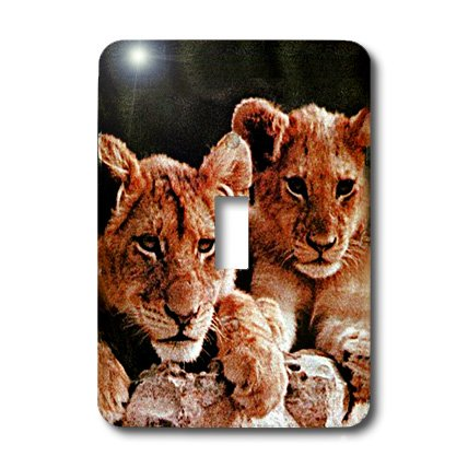 3dRose lsp_600_1 African Lion Cubs Single Toggle Switch