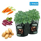 #7: Potato Grow Bags, 2 Pack 10 Gallon Portable Breathable Waterproof PE Potato and Flower Plant Growing Bag for Harvesting Potato,Carrot & Onion By LONGWEN