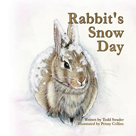 Rabbit's Snow Day