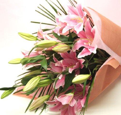 誕生日 花束 プレゼント 花 ギフト 大輪系 ピンクユリの花束 40輪以上 ゆり 百合 母の日 B001L9BN8M
