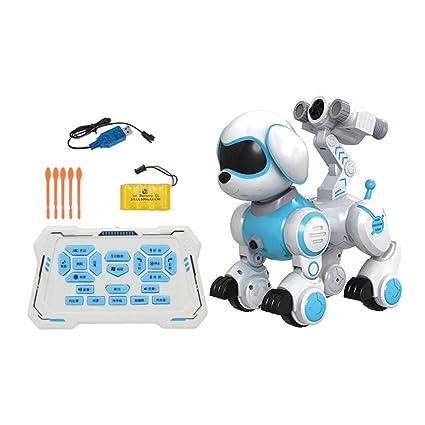 Roboterhund   Robot interattivo con cane, per la formazione di