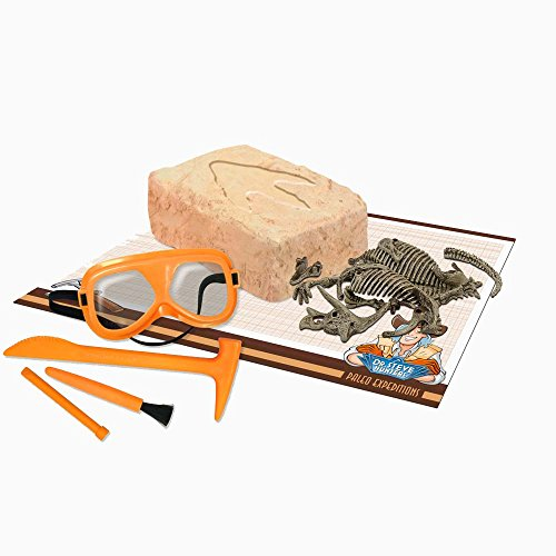 Paleo Expedition - Dino Excavation Kit - Triceratops