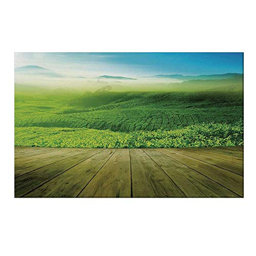 - YOLIYANA Green Durable Door Mat,Wood Platform Landscape View of Tea Plantation with Blue Sky in Morning Decorative for Home Office,15.7