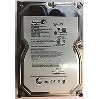 Seagate ST31000424CS 1TB, Internal Hard Drive