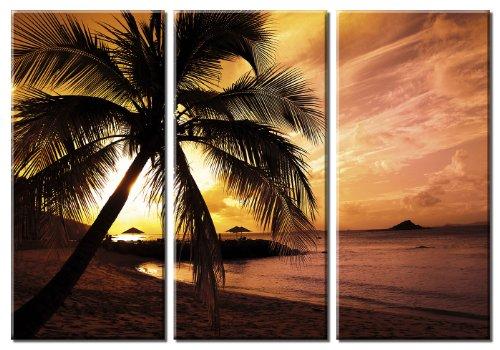 - Picture Sensations Framed Huge 3-Panel Palm Tree Sunset Beach Hawaii Giclee Canvas Art
