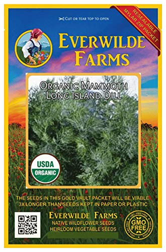 Everwilde Farms - 1000 organic Mammoth Long Island Dill Herb Seeds - Gold Vault Packet - Dill Weed Seed