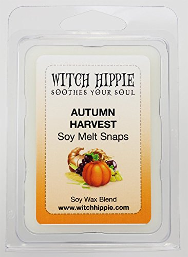 [Autumn Harvest Scented Wickless Candle Tarts, 6 Natural Soy Wax Cubes By Witch Hippie] (Best Homemade Halloween Costumes Of All Time)