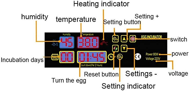 Bedler 4-Eggs Household Mini Intelligent Automatic Egg Incubator Temperature Control Hatcher for Hatching Chicken Duck Bird Quail Poultry AC220V Chicken Incubator