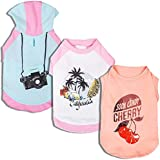 """Blueberry Pet Pack of 1 Dog Clothes 8"""" Back Length Chill Summer California Cotton Dog Shirt in Pink for Small Puppy, X-Small"""