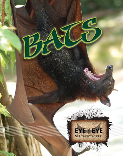 Species Bat (Bats (Eye to Eye with Endangered Species))