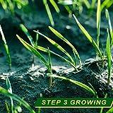 XSHM Biodegradable Grass Seed Mat
