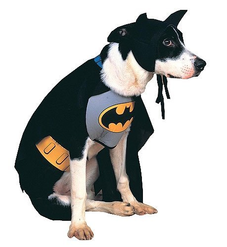 Batman Dog Costume Size Small, My Pet Supplies