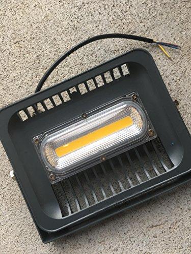 50 Watt Led Bowfishing Lights - 7