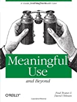 Meaningful Use and Beyond: A Guide for IT Staff in Health Care