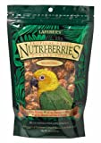 Lafeber's Gourmet Tropical Fruit Nutri-Berries for Conures 10-Ounce Bag, My Pet Supplies
