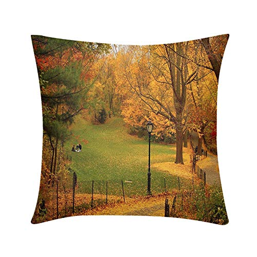 Luxury Custom Art Design Photos Throw Pillow Autumn Yellow Foliage Path in New York Central Park USA Design for Sofa Bedroom Office Car Decorate Pillow