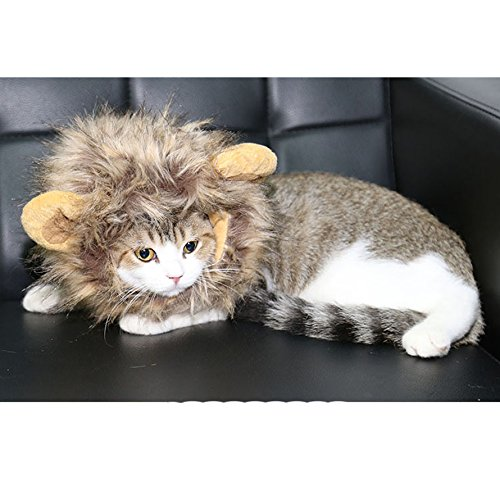 Bonawen Cat Costume Lion Mane Wig For Cat Small Dog Halloween Dress Up with Ears,Brown ()