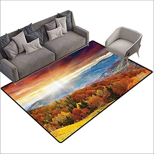 Orange Chandra Rugs - Outdoor Floor Mats Scenery Decor,Fairy Trees with Hazy Rays When Sunrise and Mystic Grungy Rain Clouds View,Orange Yellow 60