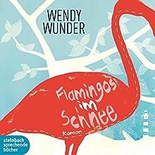 Flamingos im Schnee Hörbuch von Wendy Wunder Gesprochen von: Gabrielle Odinis