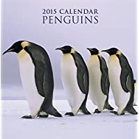 2015 Calendar: Penguins: 12-Month Calendar Featuring Wonderful Photography And Space In Write In Key Events