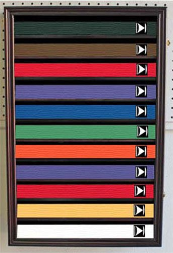 Martial Art/Karate/Taekwondo Belt Display Case Rack Wall Cabinet, with DOOR, K-HW11 (Mahogany Finish) (Belts Karate Do)