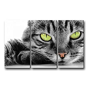 3 pièces Noir et Blanc Décoration murale Tableau œil Vert Cat photos ...