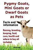 Pygmy Goats as Pets. Pygmy Goats, Mini Goats or Dwarf Goats: Facts and Information. Raising, Breeding, Keeping, Milking, Food, Care, Health and Where