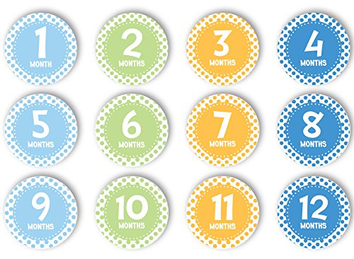 Tiny Ideas First Year Monthly Milestone Photo Sharing Baby Belly Stickers, 1-12 Months, Blue