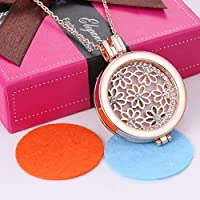 Rose Gold Crystal Locket Rhinestone Oil Aromatherapy Diffuser Necklace Pendant