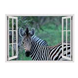 Alonline Art - Zebra in Wildlife Fake 3D Window Framed Stretched Canvas (100% Cotton) Gallery Wrapped - Ready to Hang | 34''x24'' - 85x61cm | Oil Paintings Prints Frame Oil Painting Print Giclee