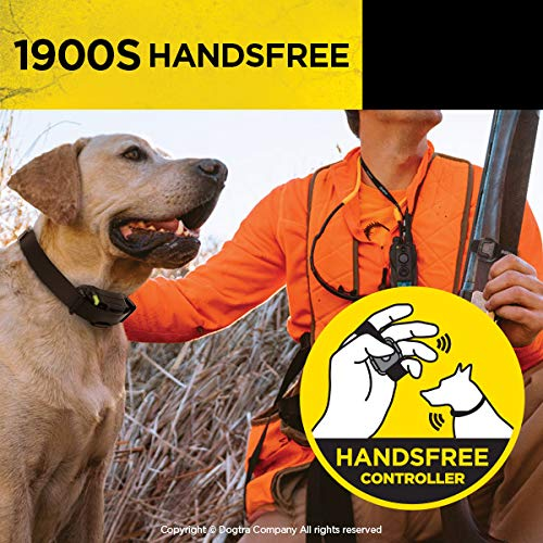 Dogtra 1900S HANDSFREE Remote Training Collar - 3/4 Mile Range, Waterproof, Rechargeable, Shock, Vibration, Hands Free Remote Controller - Includes PetsTEK Dog Training Clicker by Dogtra (Image #5)