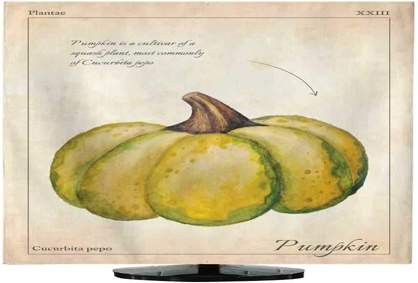 CoverGourd Calabaza Vector Ilustración de calabaza verde aislada Illustration para menú. Ilustración de calabaza de acuarela aislada con calabaza y vector de calabaza, calabaza aislada, calabaza de 30