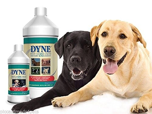 Dyne High Calorie Syrup 32oz High Calorie Dietary Supplement for Dogs & Pups